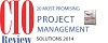 CIO Review Project Management